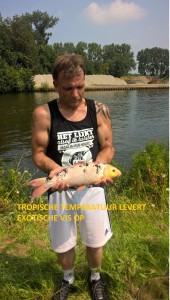 Tropische temperatuur levert exotische vissen op.